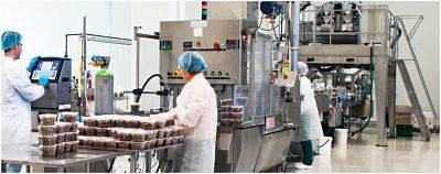 control de plagas en industria alimentaria