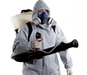 Control de plagas y desinsectación