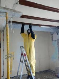 tratamiento de termitas actuacion